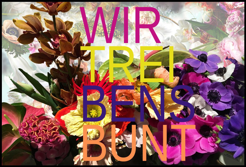 banner_NL_spring_01